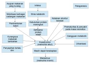 patgen-malnutrisi