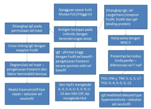 patgen_dermatitis-atopik