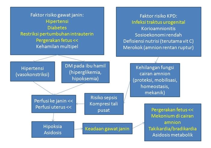 gejala klinis sepsis pdf