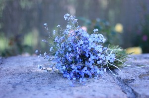 forget-me-nots-madame-love-10273328_391053311033120_2907099543544663296_o